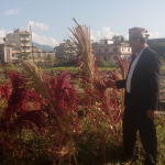 Dr Poudel shows effects of Climate Change on agricultural production in Nepal. Read more about his research  in the INASP press release based on his article published on NepJOL.