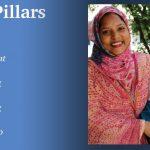 INASP Core pillars